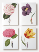 IN BLOOM - NOTECARDS 1 By Laura Stoddart