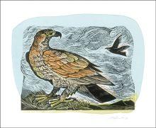 Golden Eagle Linocut by Angela Harding