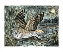 Marsh Owl linocut by Angela Harding