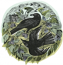 Blackbirds and Mulberries   by Angela Harding