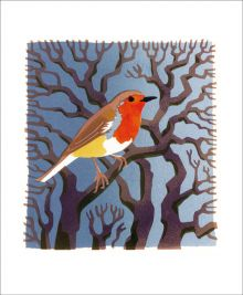 Robin by Carry Akroyd