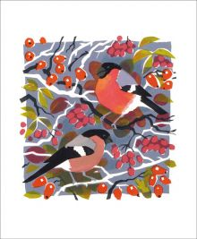 Bullfinches by Carry Akroyd