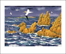 Granite, Gannet, Annet  Lithograph by Carry Akroyd
