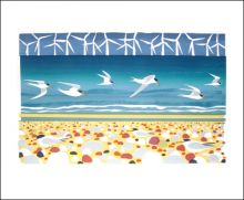Big Turns & Little Terns Screenprint by Carry Akroyd
