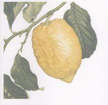 Dedham Hall Lemon Tart Recipe Card By Ann Swan