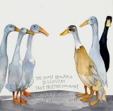 Ducks By Sam Cannon