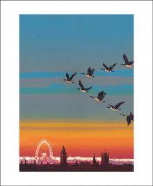Migration over Westminster by Emma Reynolds