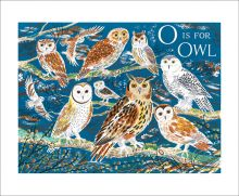O is for Owl by Emily Sutton