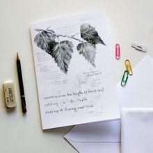 Field Notes: Birch - Large Art Card by Hannah Longmuir