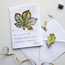 Field Notes: Chestnut by Hannah Longmuir