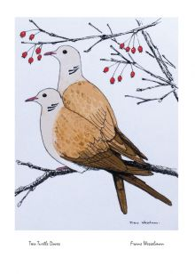 Two Turtle Doves By Frans Wesselman