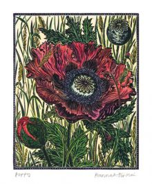 Poppy - Hannah Firmin Art Greeting Card