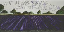 Lavendar Fields Greeting Card by Sam Canon
