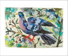 Wood Pigeon Mixed media collage by Mark Hearld