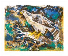Hawk Eye  Screenprint by Mark Hearld