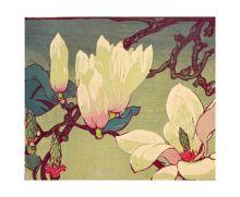 Magnolia - National Galleries Of Scotland Art Greeting Card