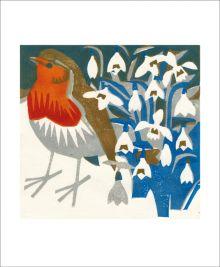 Snowdrop Robin by Matt Underwood