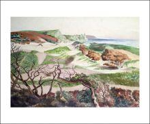 Sand Dunes and Rocky Coast by John Northcote Nash (1893 - 1977)