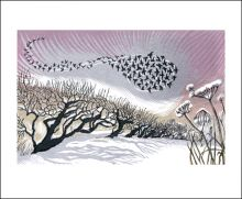 Midwinter Starlings Linocut print by Niki Bowers