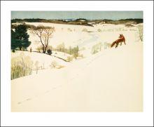 Fox in Winter by N C Wyeth