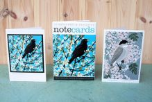 Blackthorn Blackbird / May Blackcap from original prints by Robert Gillmor