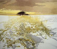 Snow Light Etching by Phil Greenwood