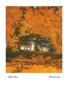 Shadows Way By Phil Greenwood