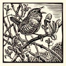 Wren by Richard Allen SWLAArt Greeting Card, Linocut