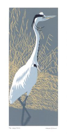 Robert Gillmor Wary Heron linocut - Robert Gillmor Art Greeting Card
