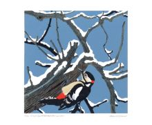 'Great Spotted Woodpecker' from a linocut by Robert Gillmor