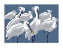 Spoonbills Linocut by Robert Gillmor