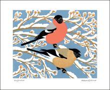 Bullfinches linocut by Robert Gillmor