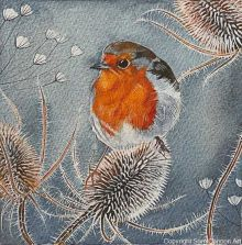 Robin and teasels By Sam Cannon