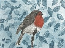 Robin Redbreast - etching/aquatint by Jane Peart
