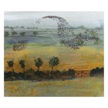 Starlings by Richard Sorrell