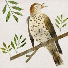 Singing Bird BY GORDY WRIGHT