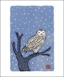 Snowy Owl by Neil Brigham