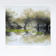 Standing water By Jo Barry
