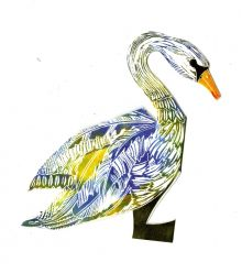 Swan D Gift Cards - Judy Lumley Prints