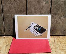 The Little Bird By Liz Toole