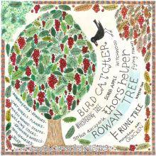 The Rowan Tree - Limited Edition Print by Fiona Willis