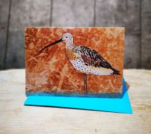 Felicity the Curlew By Liz Toole
