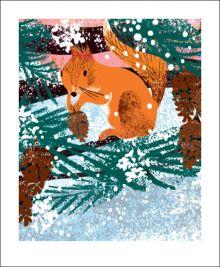 Winter Squirrel  by Tim Hopgood